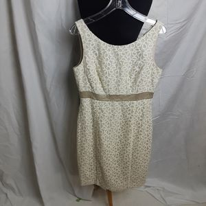 NWT Calvin Klein Lace overlay beige dress Size 10